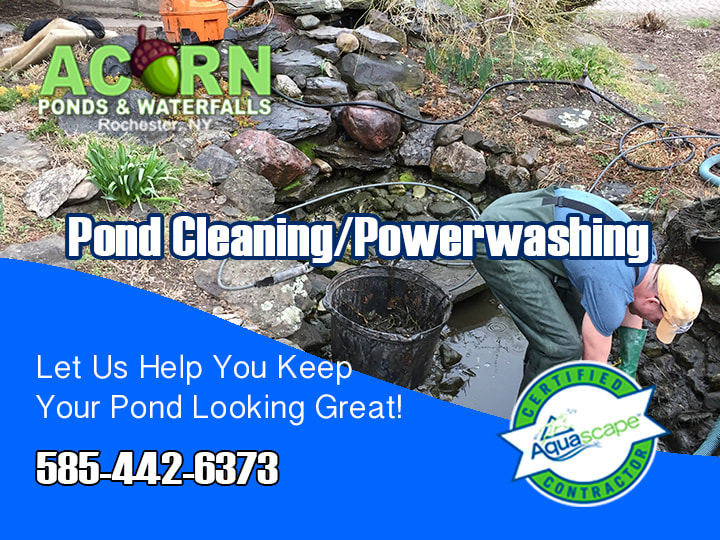 Pond Cleaning Services By Acorn Ponds & Waterfalls Of Rochester NY