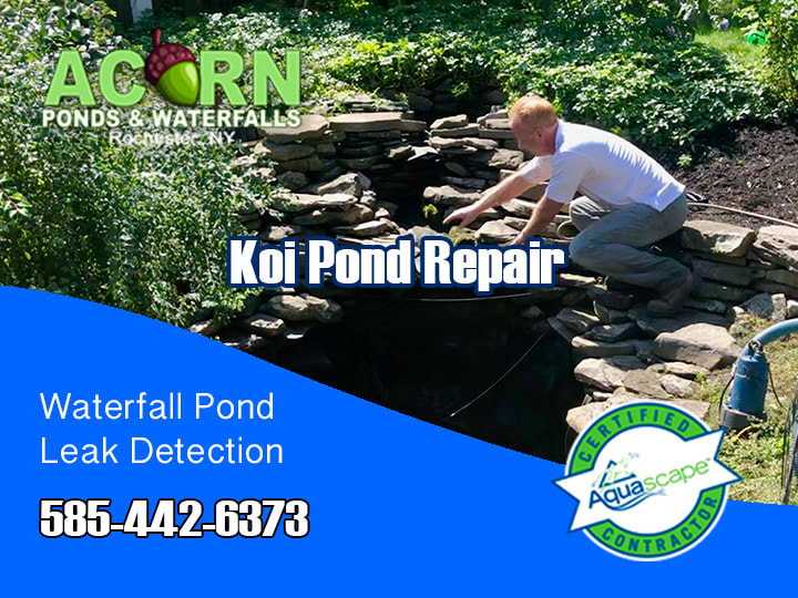 Pond Maintenance Repair By Acorn Ponds & Waterfalls In Western NY