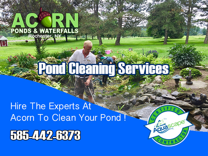 Pond Maintenance-Repair Contractors- Rochester (NY) - Acorn Ponds & Waterfalls